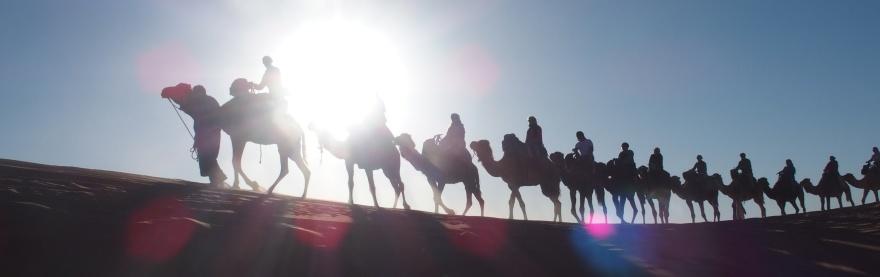 """Rida dromedar i Sahara är bara en av alla upplevelser på den unika gruppresan """"Marocko på riktigt"""" som du kan göra med marockoresan.se"""
