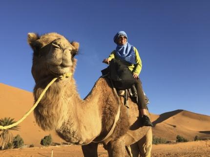 Vi rider dromedar till vår camp där vi övernattar, marockoresan.se