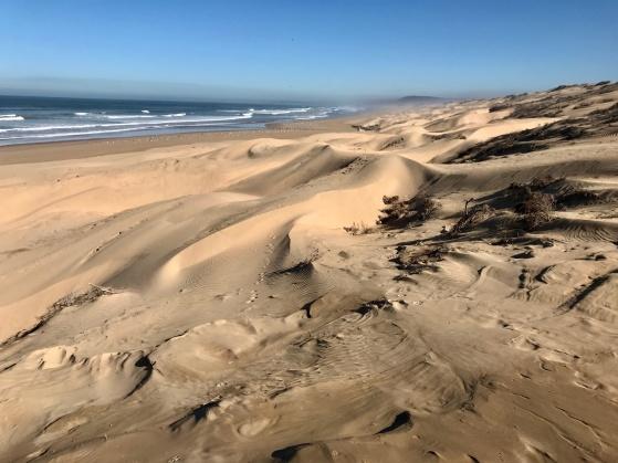Gör en promenad längs norra stranden, som  snart också blir magnifika sanddyner.