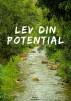 Lev Din Potential - Lev Din Potential