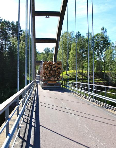 Skogen sysselsätter många i bygden.