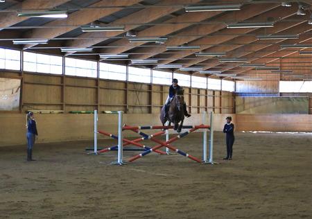 Uppvisning i hästhoppning.