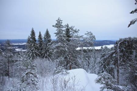 Utsikt från Valfjällets topp.