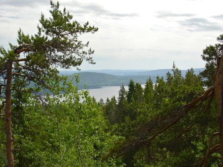 Utsikt från Valfjällets topp i juni.