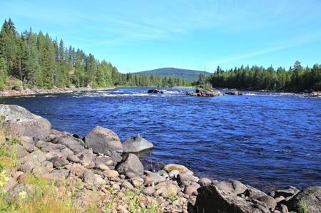 Vid Långflon rinner vattnet från Trysilelva ut i Höljessjön.