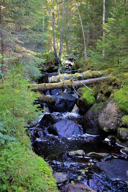 Det finns många små tillflöden till Klarälven.