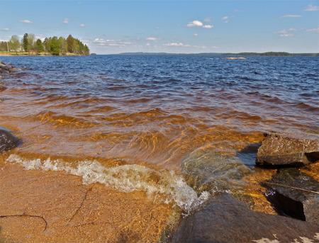 Vid sjön Foxens strand norr om Lennartsfors.