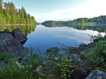 Torsviken i sjön Töck.