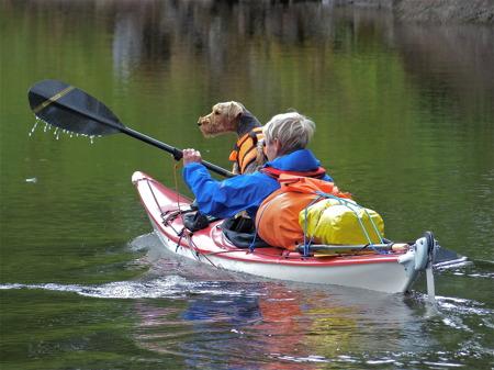 Kanottur i sjösystemet, då får naturligtvis hunden följa med.