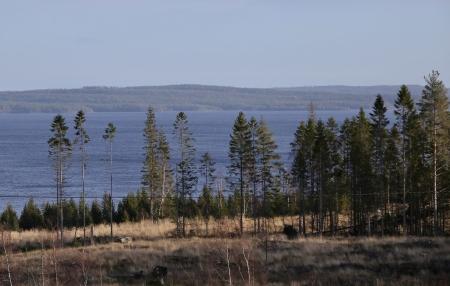 Efter en stund öppnades utsikten över Glaskogens största sjö Stora Gla.