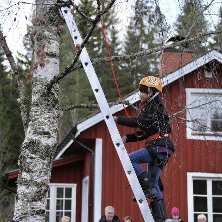 En aktivitet var att klättra högt upp i ett träd där man skulle plinga i en klocka.
