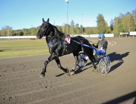 Järvsöodin med Ulf Ohlsson i sulkyn.