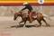 reining2