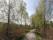 gångvägen runt sjön