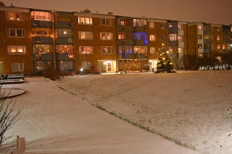 VInter, och snö!