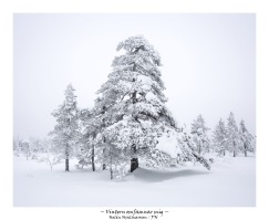 Vintern omfamnar mig