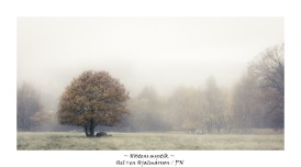 Höstens mystik