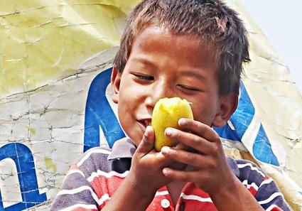 Pojke äter mango, Kathmandu, Nepal