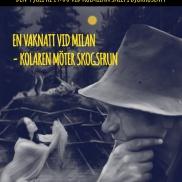 Affisch för berättarkvällen