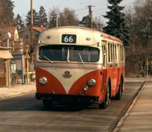 Buss 66