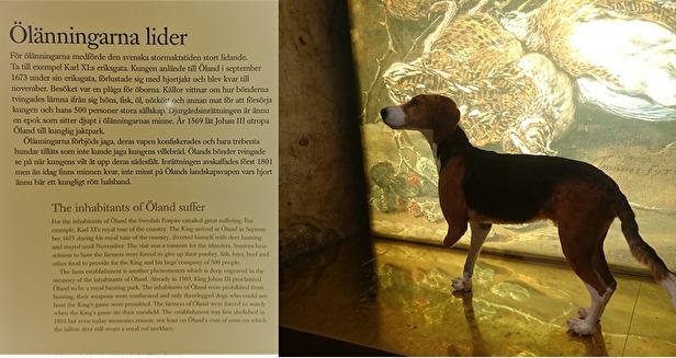 Foto: från Borgholm Slott - enbart trebenta hundar var tillåtna på 1600-talet