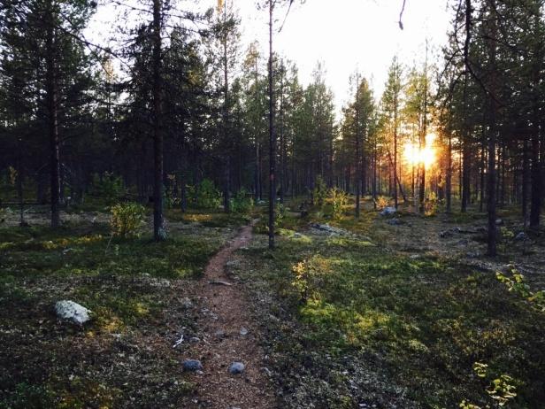 Rallarstigen Foto: Laponia Triathlon.