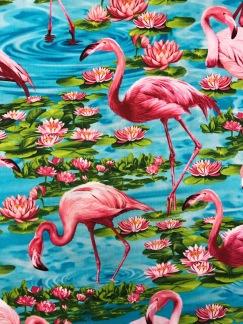 Näckros och flamingo -