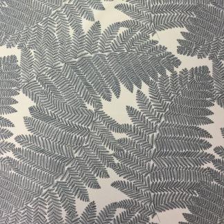 Ormbunke blå - Ormbunke blad