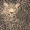 Leo beige- bomullstrikå - Leo Leopard trikå