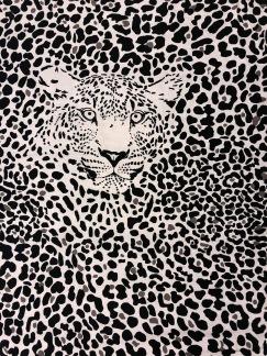 Leo grå- bomullstrikå - Leo Leopard grå