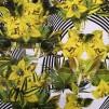 Blommor baddräktstyg - Blommor baddräktstyg