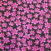 Anemone bomullstrikå