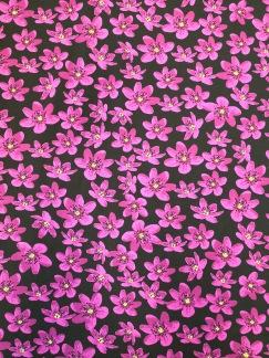 Anemone bomullstrikå - Anemone