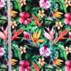 Tropiska blommor trikå