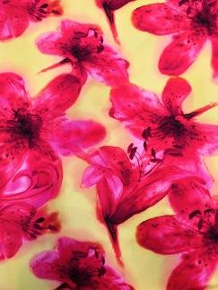 Rosa lilja - Rosa lilja
