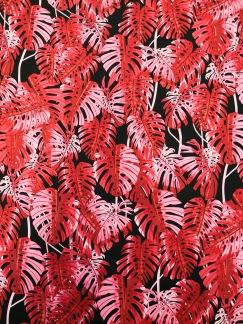 Cerica blad - Cerisa blad