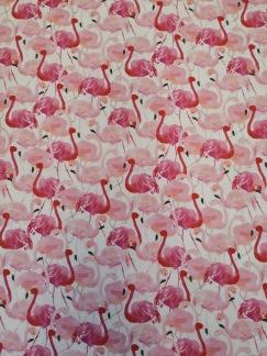 Rosa flamingo - Rosa flamingo
