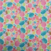 Seashell pastel