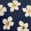 Blå Sommar Blomma