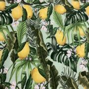 Somriga Citroner