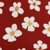 Röd Sommar Blomma