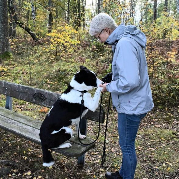 Min hund Roddy och jag