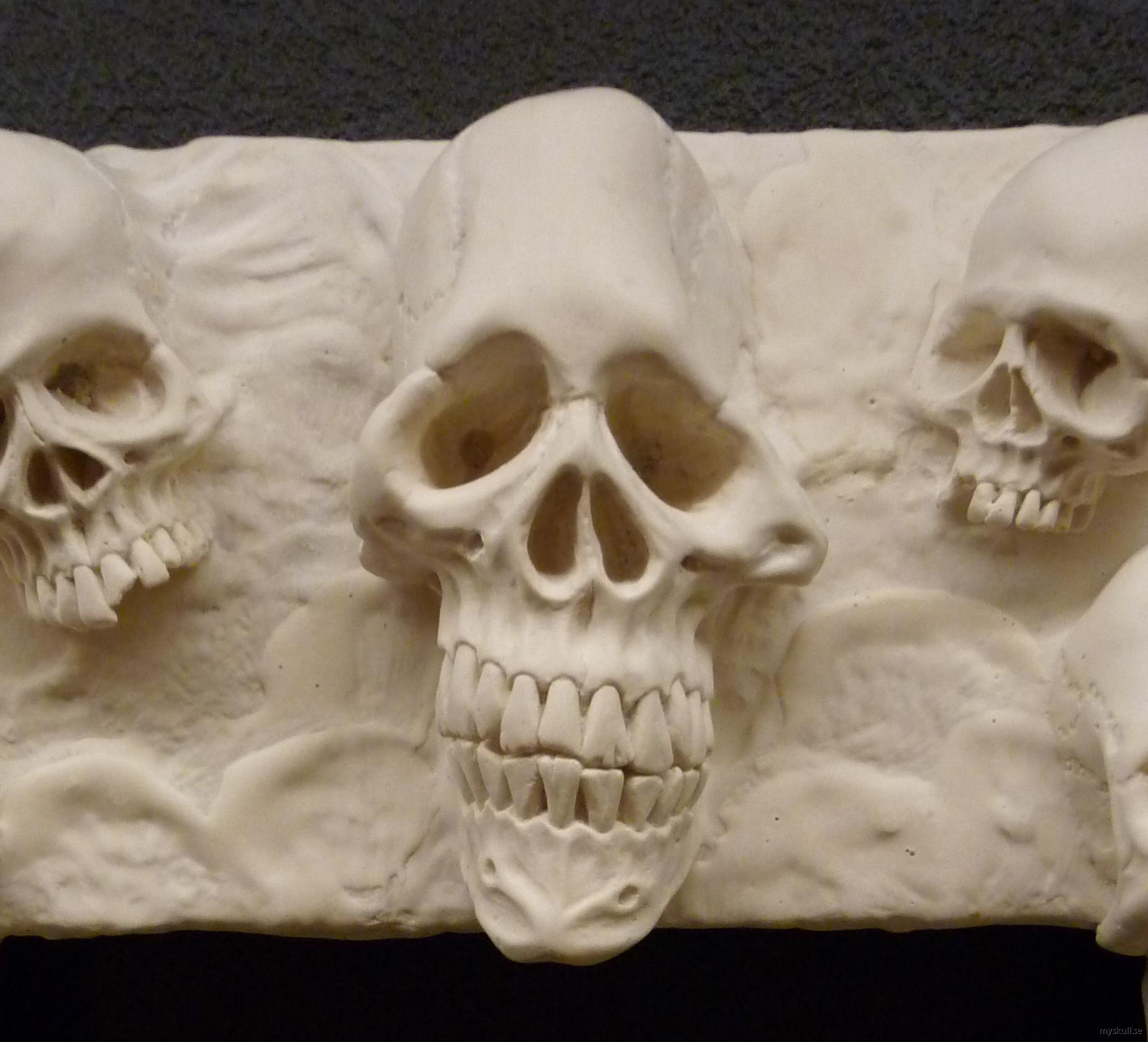 Hand made skull frames