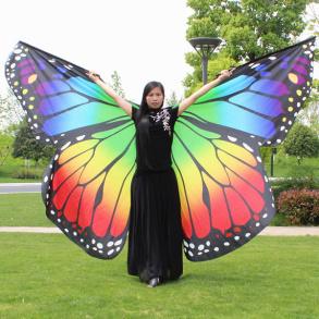 Butterfly Wing Ombre - Butterfly Wing Ombre
