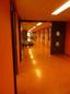 ijburg korridor