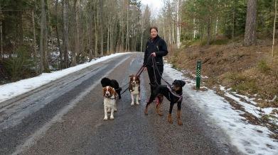 LINDA jobbar dels hos oss på Skogsdungens hunddagis och dels i företaget HundTänk där hon håller kurser, föreläsningar och utbildningar. Hon har gått ett antal utbildningar inom hund - bl.a. är hon dipl. Hundinstruktör ochHundprobemsutredare. Dessutom har hon en magisterexamen i Biologi från Stockholms universitet. Innan hon började jobba hos oss höll hon i vår hunddagisutbildning som många i personalen gick.  Linda har en dobermanntiksom heter Britt.