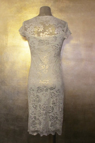 Olvis' Shimmer Lace Dress | Light Gold - EU 38