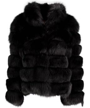 Levinsky Black Fox - Maruschka de Margo
