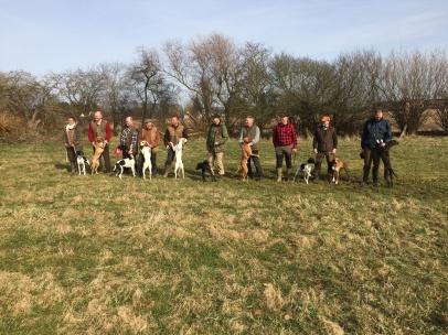 De tio hundarna som tävlade om bästa unghund  i matchningen, Pilgrim och Patric tvåa från höger