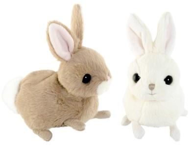 Kaninerna Zeus och Hera Baby